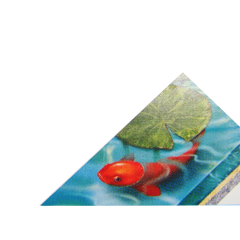 Pond Sealer Colour